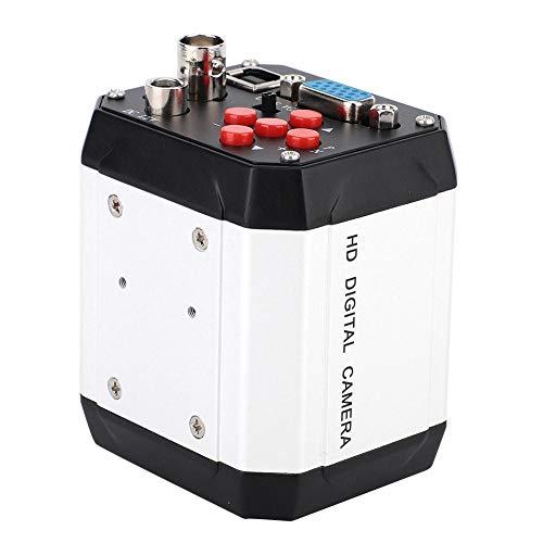 Nannday USB Mikroskopkamera, 100 240 V 2MP Industriemikroskopkamera C Mount Video VGA USB CVBS Schnittstelle für das Lehrlabor für Schmuck der Mikroelektronik(EU)