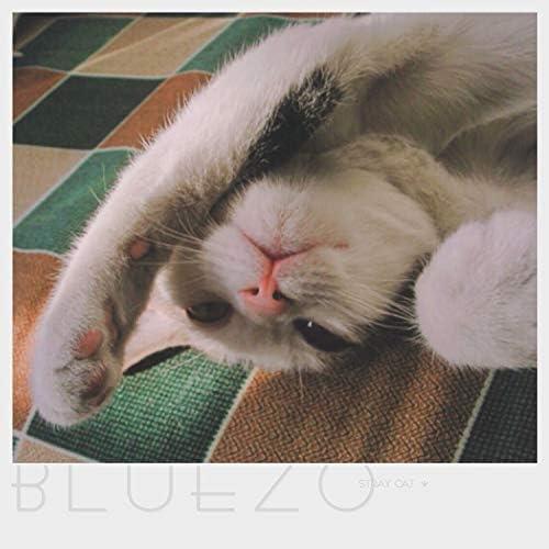 Blue Z.O