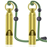 Emergency Survival Whistles | Heavy Duty Signal Whistle with Lanyard | Essential for Outdoor Activities | By DeBizz Value 2 Pack