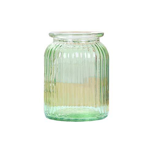Skyeye 1PCS Moderne col Large Vase en Verre Rayures Verticales Jacinthe d'Vase en Verre hydroponique Vase pour la Maison Décoration de Jardin Vert 14.5 *11 CM