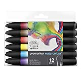 Winsor & Newton Promarker Watercolor Rotulador de acuarela, Tonos Básicos, Set de 12