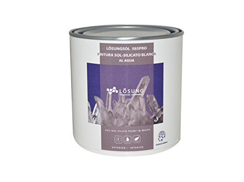 Pintura Sol-Silicato Blanca (750 ml)