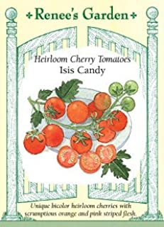 Heirloom Cherry Tomatoes Isis Candy Seeds