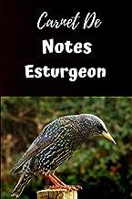 Carnet De Notes Étourneau: Carnet de Notes 6x9 pouces personnalisé de 100 pages lignées|Une belle idée de cadeau pour amoureux des Étourneaux