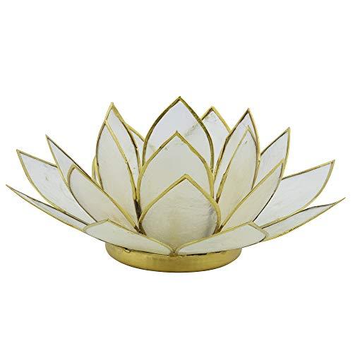 Lotus Teelicht weiß aus Capiz Muschel - Natur Qualität Kerzenhalter, Windlichter, Teelichthalter - Dekoration 16 cm x 15 cm x 8 cm