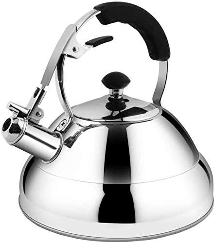 Bouilloire induction Kettle Siffling 2,6 litres Acier inoxydable Fast Bood Cuisine Maison Thé à la maison Boisson chaude for vitrocéramique à halogène électrique à gaz argent WHLONG