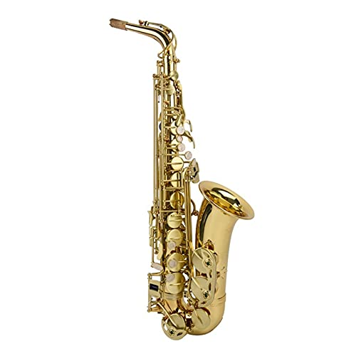 Kit para Principiantes Saxo Alto EB Tune Saxophone Plateado Gold Key Super Professional Sax Boquilla Boquilla Regalo Alto Saxofón