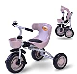 LaxM Kids Tricycles Foldable Kids Bike Ride On Toys Age 3 to 5 Yrs (Pink)
