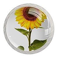 取っ手、キャビネットのノブはドレッサーの引出しのための4つの部分を扱います花 ドアノブクリスタルガラス
