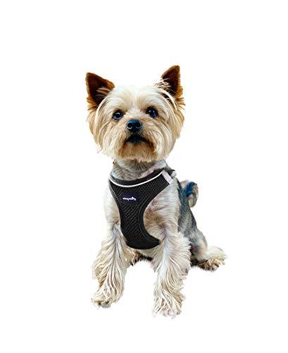 ASMPET Hundegeschirr und Leine, reflektierendes atmungsaktives Luftnetz, einfache Kontrolle, Hundeweste für kleine mittelgroße Hunde, Spaziergänge im Freien (X-Small(Brustumfang: 32–36 cm), schwarz)