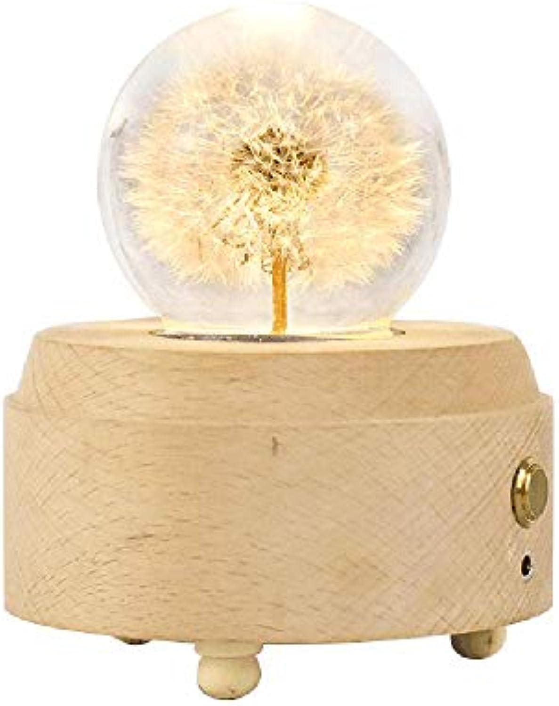 HAIXIANG PusteBlaume Kristallkugel Holzsockel Ewige Blaume Fernbedienung Spieluhr Nachttisch Lampe Tischleuchte Schlafzimmer Wohnzimmer Modern
