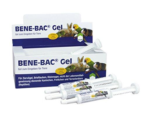 Albrecht Bene-Bac Gel 12 Tuben a 15g