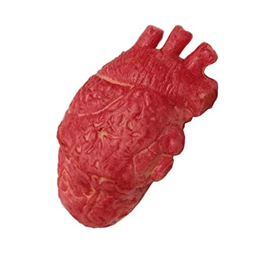 U-K Halloween terror prop sangrienta comida zombi falsificada corazn humano parte del cuerpo orgnico duradero y prctico diseo atractivo prctico y duradero