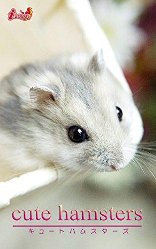 cute hamsters02 ジャンガリアンハムスター cute animal   アキバ書房 ...