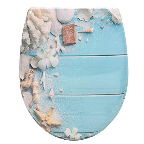 WOLTU Toilettendeckel mit Absenkautomatik Klodeckel WC Sitz Softclose antibakterielle Klobrille mit Quick Release Funktion Duroplast Oval einfache Montage WS2910