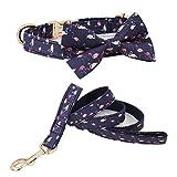 WANGJIN Collar de Perro Ajustable New Navy Flamingo Pattern Collar para Perros Set de Correa para Perros Set Personalizado de Regalo para Mascotas, Set Completo, XL (43-66cm de Longitud)