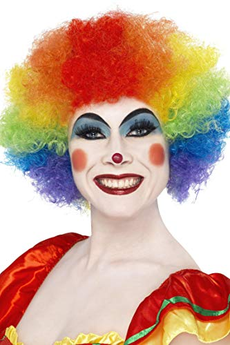 Smiffys Unisex Bunte Afro Perücke, Verrückter Clown Perücke, Bunt, One Size, 42088