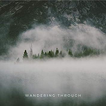 Wandering Through