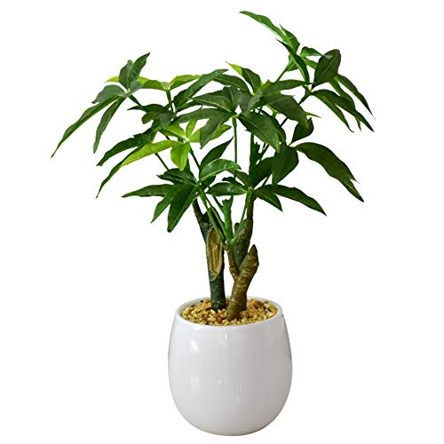DORIS 人工観葉植物 簡単世話いらず 水やり不要 フェイクグリーン パキラ S