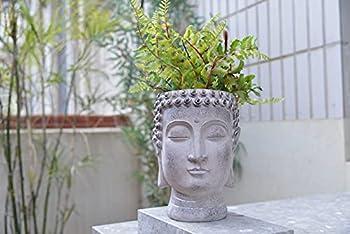 Buddha Head Planters Resin Face Flower Pot Statue Decor for Home Garden Succulents Cactus Plants Pot 6.7L x 6.7W x 8.7H inch-Newman House Studio