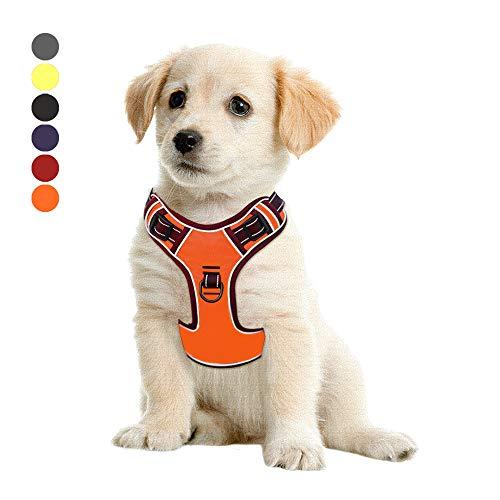Hundegeschir Kein Ziehen, Verstellbar, Weiches Brustgeschirr, Reflektierend, Atmungsaktiv, Leichtes Hundegeschirr für Kleine, Mittelgroße und Große Hunde Orange S