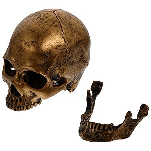 NUOBESTY Decoração Cabeça de Esqueleto Humano Crânio Ossos Humanos Escultura Estátua de Resina Réplica de Esqueleto para O Ensino de Ciências Da Vida de Ouro Do Dia Das Bruxas