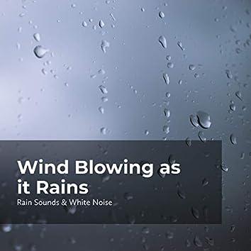Wind Blowing as it Rains