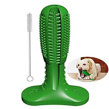 Bâton de brosse à dents pour chien, mise à niveau des jouets à mâcher pour chien, nettoyage naturel des dents de chien et bâton dentaire, bâton de brossage pour soins bucco-dentaires(Moyen, Vert)