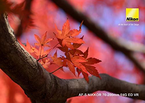 Nikon望遠ズームレンズAF-SNIKKOR70-200mmf/4GEDVRフルサイズ対応