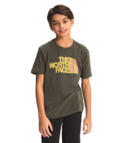 The North Face Boys' S/S Graphic Tee, New Taupe Green/Sulphur Spring Green, M