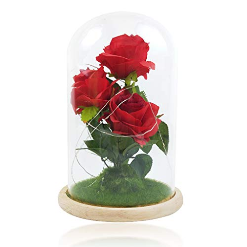 MTFITNESS 2020 New Artificial Rose Flower Gift, Infinity Rose in Glass Dome with USB Unique Gifts for Women, Christmas, Valentine's Day, Anniversary Multicolor (Red1)