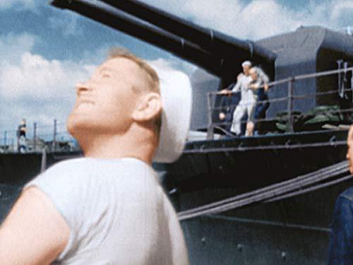 Japan und der Pazifikkrieg