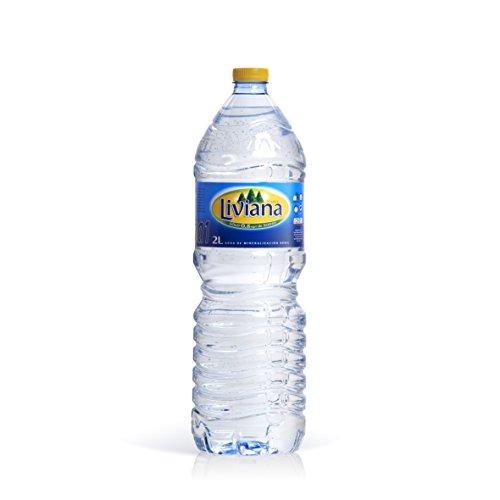 Liviana - Fuente Botella 2 L