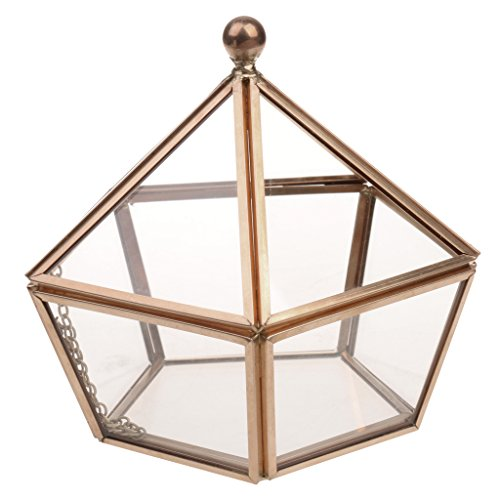 Fenteer Boîte Terrarium en Verre Transparent Maison Serre de Table pour Plante Micropaysage Bijoux Organisateur Décoration Fête - Or Antique
