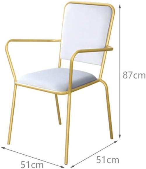 Chaise de Salle à Manger Restaurant nordique en fer forgé Chaise de salle à manger Banquet Chaise en métal Café Lounge Bar Retour Bar Chaise (Color : Green) White