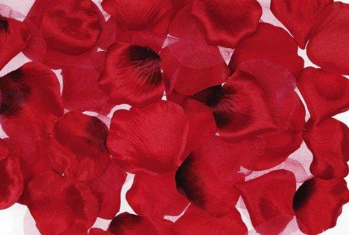 Romantic Honeymoon Gift Basket filler - rose petals