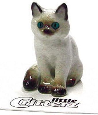 """Little Critterz""""Samantha"""" Ragdoll Kitten"""
