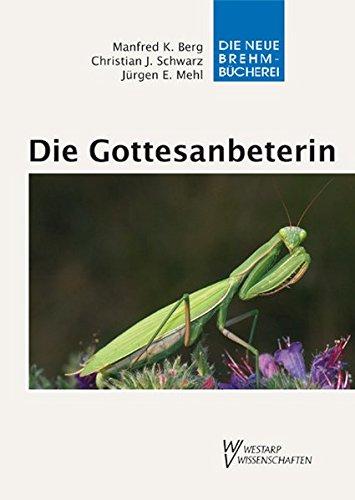 Die Gottesanbeterin - Mantis religiosa