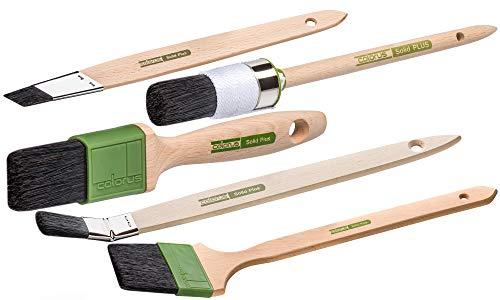 Colorus High Premium Malerpinsel Set 5 tlg. | Lackierpinsel-Set | Flachpinsel 40 mm, Ringpinsel Gr. 6, Heizkörperpinsel 50 mm, Plattpinsel 20 mm, Strichzieher 25 mm | Malerpinsel für alle Lacke