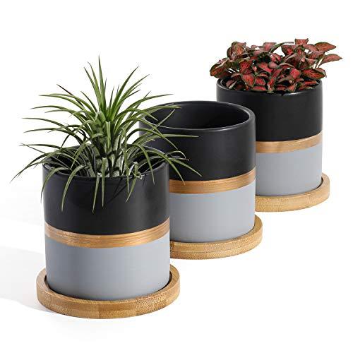 Mini Succulent Planter Pots Set of 3 $10.00 (50% OFF Coupon)