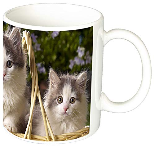 Cesta De Gatitos Basket of Kittens Gatos Cats Tasse Mug