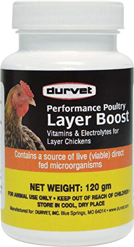 Durvet Healthy Flock Poultry Layer Boost, 100 gm