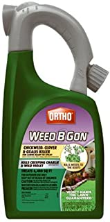 Best weed b gon chickweed killer Reviews