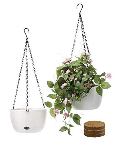 SAROSORA - Maceta colgante de 20,32 cm para plantas de interior y exterior, 2 unidades, 20,32 cm