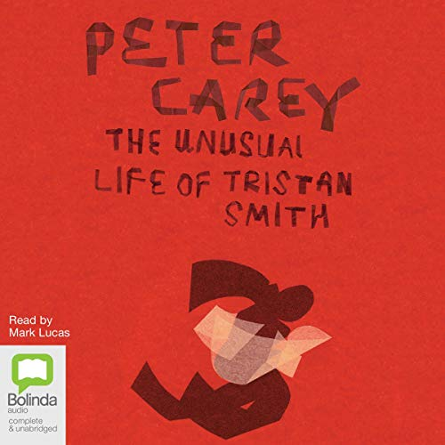 The Unusual Life of Tristan Smith cover art