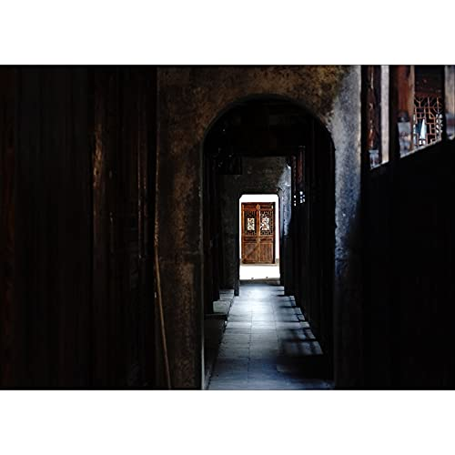 Accesorios de Fondo de fotografía de Vinilo Fondo de fotografía de Puerta de Madera clásica Accesorios de fotografía de Estudio A3 7x5ft / 2,1x1,5 m