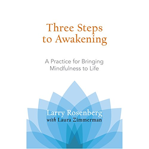 Three Steps to Awakening cover art