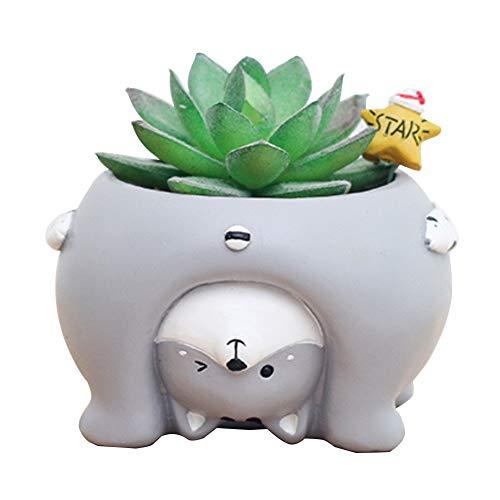 Good01 - Contenitore per piante grasse in resina, per maiale e cane, motivo: maiale o gatto, in stile bonsai