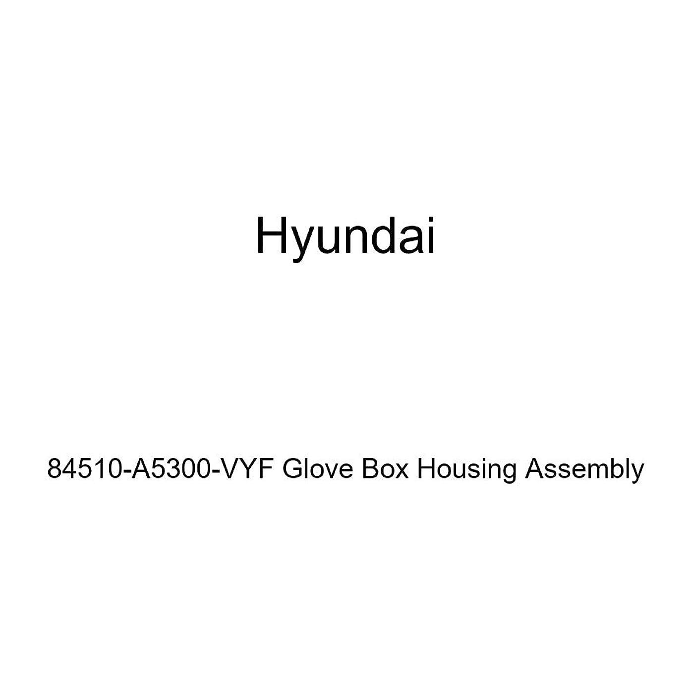 Genuine Hyundai 84510-A5300-VYF Glove Box Housing Assembly