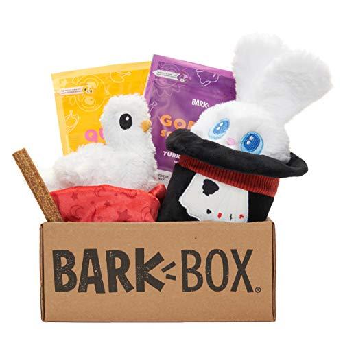 BarkBox Monthly Subscription Box | Dog Chew Toys, All Natural Dog Treats, Dental Chews, Dog Supplies Themed Monthly Box | Medium Dog (20-50lb)